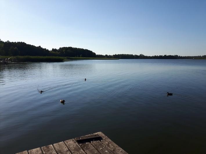 Widok z pomostu na jezioro.